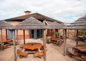 Hen Party Venues Prices - Bar Africa