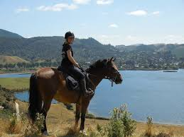 Stag Do Action Prices - Rotorua Horse Trek Combo